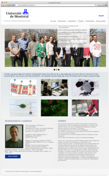 Сайт для Prof. Kevin J