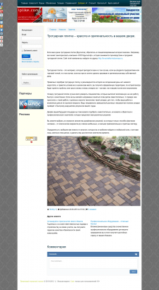 Тротуарная плитка – красота и оригинальность