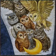 Иллюстрация для коллекции одежды
