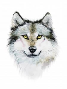 Волк принт на футболку