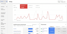 Google AdWords в США Приватные туры в США