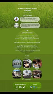 Дизайн сайта экологической организации