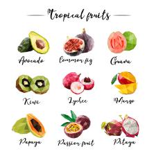 Векторные иллюстрации фруктов в стиле лоу поли