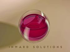 """Элемент фирменного стиля """"Inward Solutions"""""""