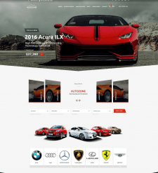 Auto Auction Marketplace