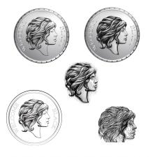 макет для гравировки монеты портрет по фото