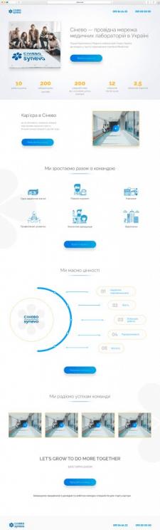 Дизайн сайта лендинга для Синево