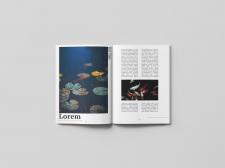 Журнал Koi