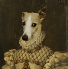 Портреты собак вставка в картину