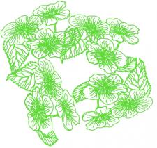 цветы нарисованные светло-зеленым контуром