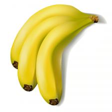 Иллюстрация бананов