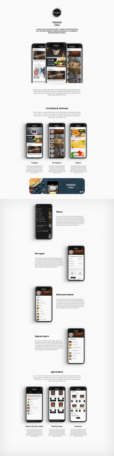 Кейс для презентации мобильного приложения
