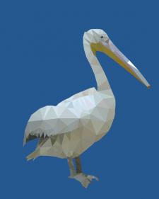 """Векторная иллюстрация """"Пеликан"""""""