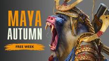 Баннер Maya Autumn