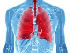 БАДы для лёгких NSP