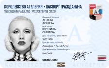 Образец паспорта игрового государства
