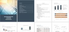 Аналитический отчет о компании