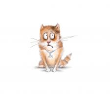Персонаж кот