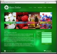 Разработка сайта для компании «Aroma-Trading»