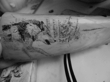 скримшоу волк