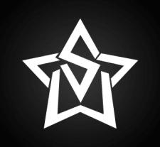 Логотип бренда White Star