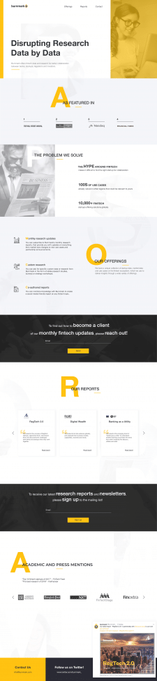 "Web Design ""Business Analyst"""