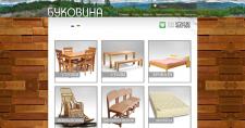 Разработка сайта bukovina.kiev.ua