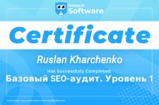 """Сертификат """"Базовый SEO-аудит. Уровень 1"""""""
