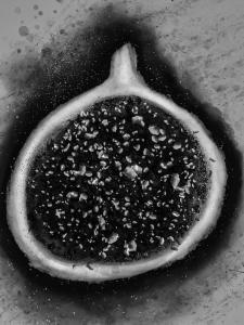 Иллюстрация фрукта