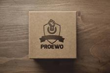 Логотип для клининговой компании, Польша