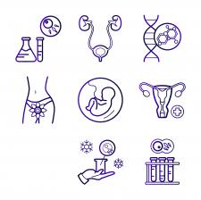 Иконки для сайта по гинекологии