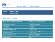 Составление бизнес-плана по стандарту UNIDO