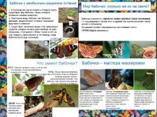 Презентация о бабочках (для школьника)