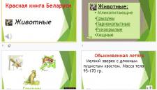 """Презентация """"Красная книга Беларуси"""""""