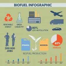 Инфографика по биотопливу