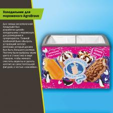 Дизайн холодильника для мороженого AgroBravo