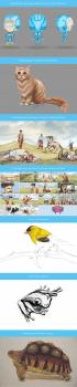 Сториборды для рекламных роликов, создание персона