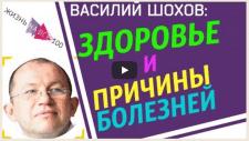 """Василий Шохов """"Здоровье и причины болезней"""""""