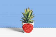 Дизайн горшка для цветов