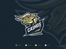 CASHOX - Logo Design