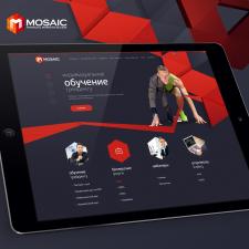 Mosaic IMG