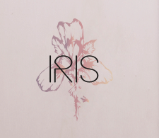 """Логотип для салона одежды и обуви """"IRIS"""""""