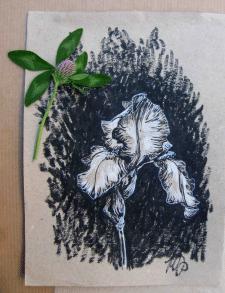 Квіти на тонованому папері