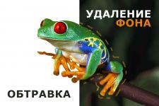 Обтравка фото лягушки + коллаж