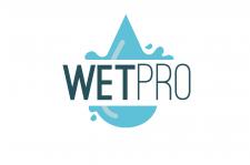 Логотип для WETPRO