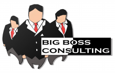 Big boss consulting