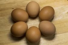 Яйце-солнце:)
