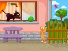 Иллюстрации о котах Chester & Morgan