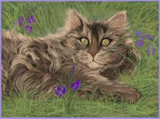Рисунок в Иллюстраторе