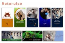 Naturulse (таргет. реклама в FB и Insta)